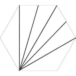 Aster blanco hexagon
